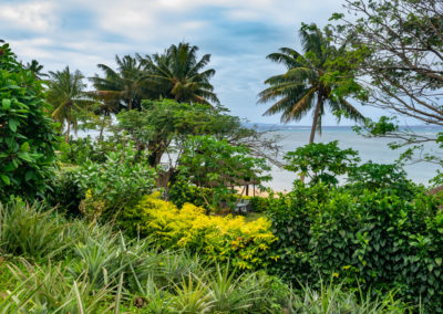 For Sale Coconut Grove Beachfront Cottages Taveuni-9